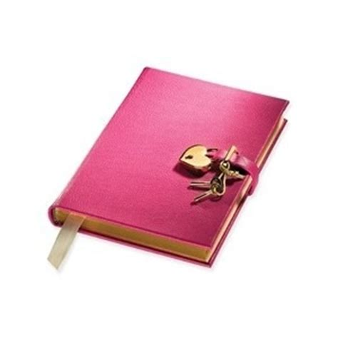 Essay on the secret diary